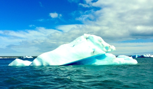 One of the many icebergs floating in the lagoon