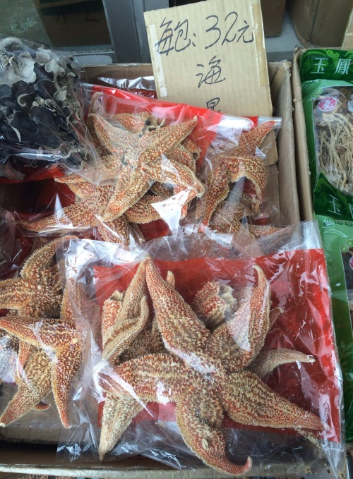 Starfish at the Tai Po Hui market in Hong Kong