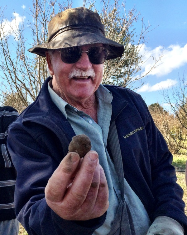 A prized black truffle
