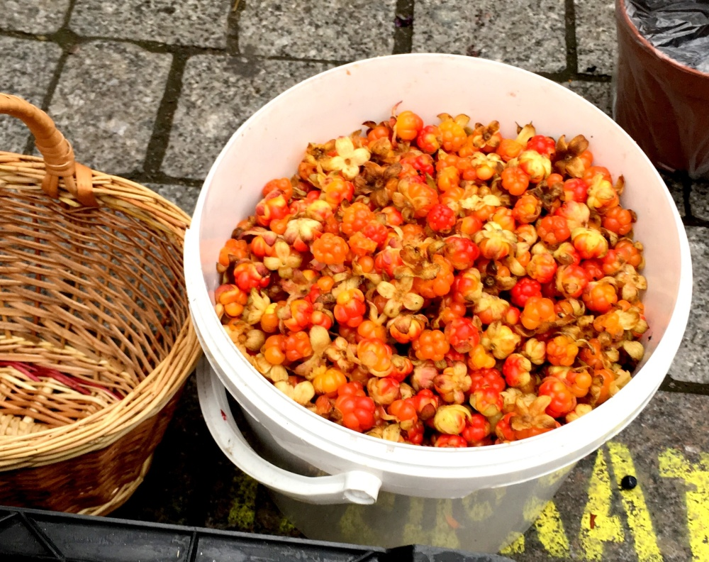 the fidgety foodie_ 9 more reasons to love cloudberries(21)